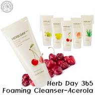 The Face Shop Herb Day 365 Cleansing Foaming Cleanser-Acerola (170ml) (FSS-17AR)