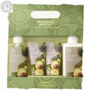 The Face Shop Avocado Special Body Set Lotion 300ml+50ml / Wash 300ml+50ml Lotion (FSS-18SET)