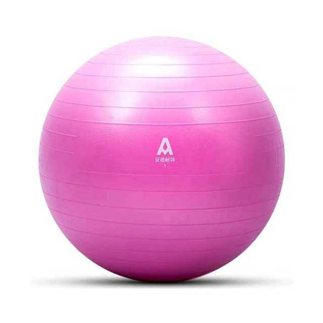 Agnite Yoga Ball (F4171)