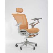 Trendy N COMFORT Office Chair (TC-002NFE (Orange))