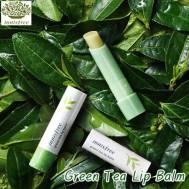 Innisfree Green Tea Lip Balm (3.6g) (IFL-01)