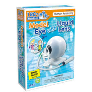Monument Hands-on Model Eye With Liquid Lens(4548030964290)