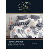 Cozy Bed Sheet Size (5)