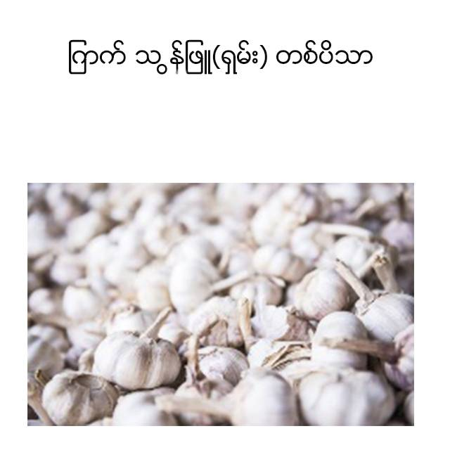 Garlic Shan Mya Lay Khine (1viss ) ျကက္ သ ြန္ျဖဴ ရွမ္း (တစ္ပိသာ)