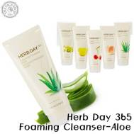 The Face Shop Herb Day 365 Cleansing Foaming Cleanser-Aloe (170ml) (FSS-17A)