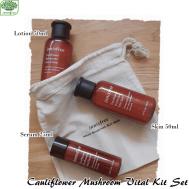 Innisfree Cauliflower Mushroom Effective Kit Set (3 Items : Skin 50ml+Lotion 50ml+Serum 25ml) (IFK-28)