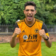 Wolves Home Kit 2020-21 (Fan Version)